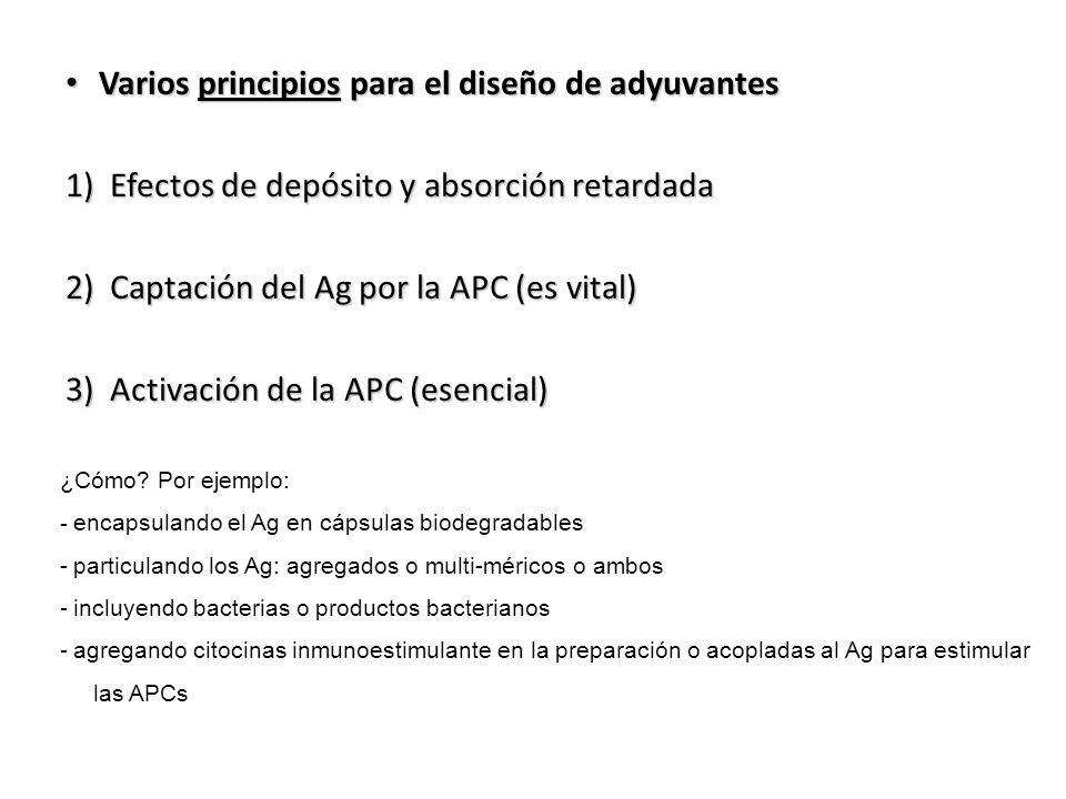 Varios principios para el diseño de adyuvantes Varios principios para el diseño de adyuvantes 1) Efectos de depósito y absorción retardada 2) Captació