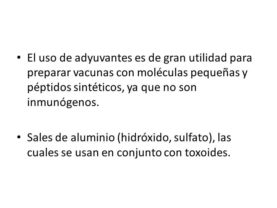 El uso de adyuvantes es de gran utilidad para preparar vacunas con moléculas pequeñas y péptidos sintéticos, ya que no son inmunógenos. Sales de alumi