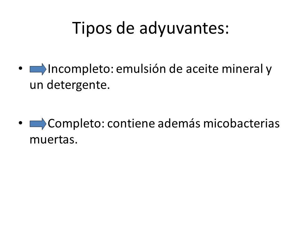 Tipos de adyuvantes: Incompleto: emulsión de aceite mineral y un detergente. Completo: contiene además micobacterias muertas.