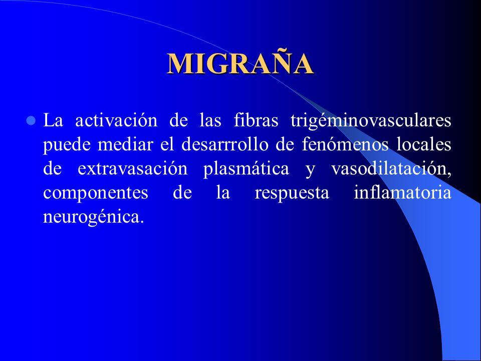 MIGRAÑA La activación de las fibras trigéminovasculares puede mediar el desarrrollo de fenómenos locales de extravasación plasmática y vasodilatación, componentes de la respuesta inflamatoria neurogénica.