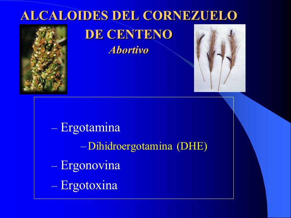 ALCALOIDES DEL CORNEZUELO DE CENTENO Abortivo – Ergotamina –Dihidroergotamina (DHE) – Ergonovina – Ergotoxina