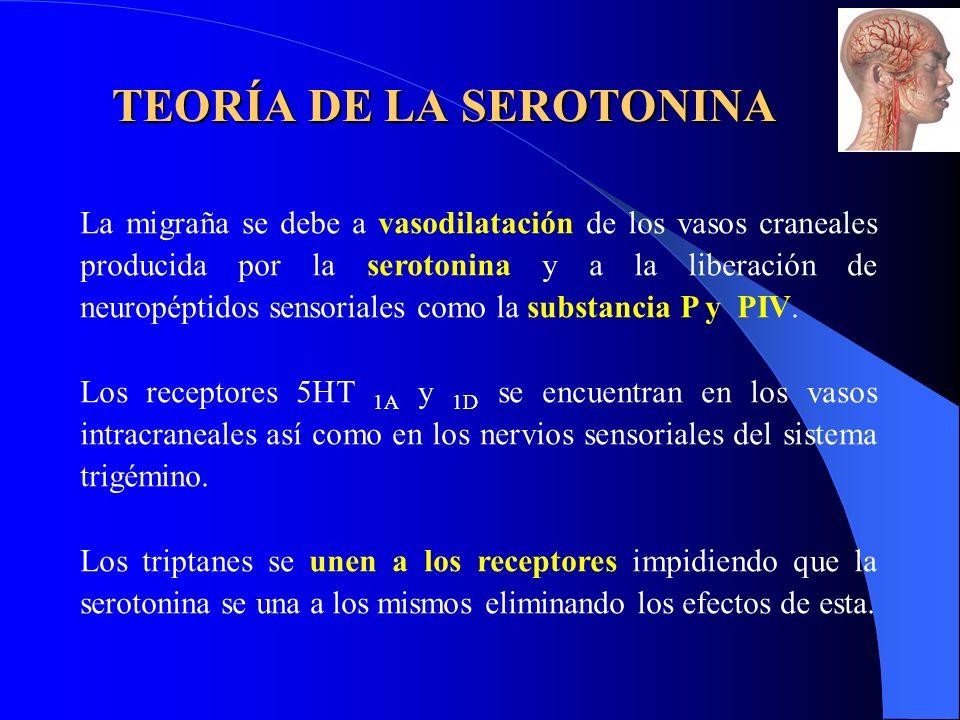 TEORÍA DE LA SEROTONINA La migraña se debe a vasodilatación de los vasos craneales producida por la serotonina y a la liberación de neuropéptidos sensoriales como la substancia P y PIV.