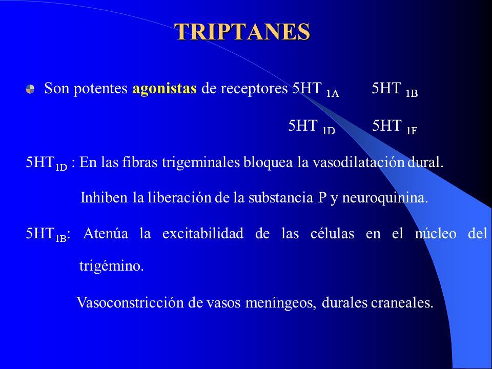 TRIPTANES Son potentes agonistas de receptores 5HT 1A 5HT 1B 5HT 1D 5HT 1F 5HT 1D : En las fibras trigeminales bloquea la vasodilatación dural. Inhibe
