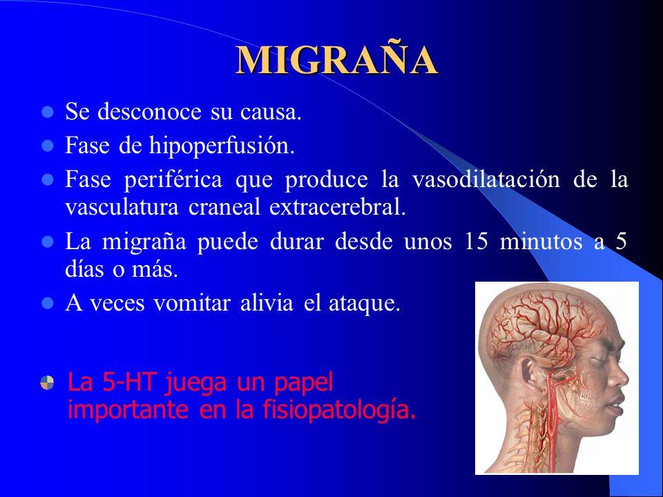 MIGRAÑA Se desconoce su causa. Fase de hipoperfusión. Fase periférica que produce la vasodilatación de la vasculatura craneal extracerebral. La migrañ