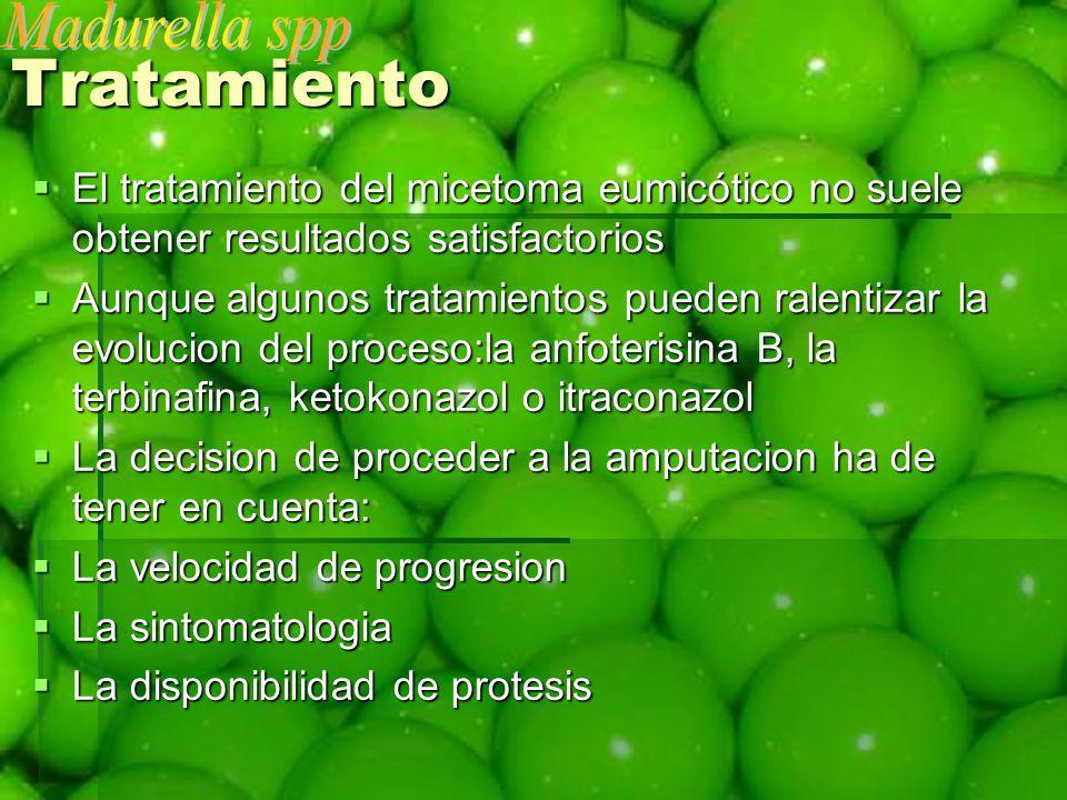 Tratamiento El tratamiento del micetoma eumicótico no suele obtener resultados satisfactorios El tratamiento del micetoma eumicótico no suele obtener