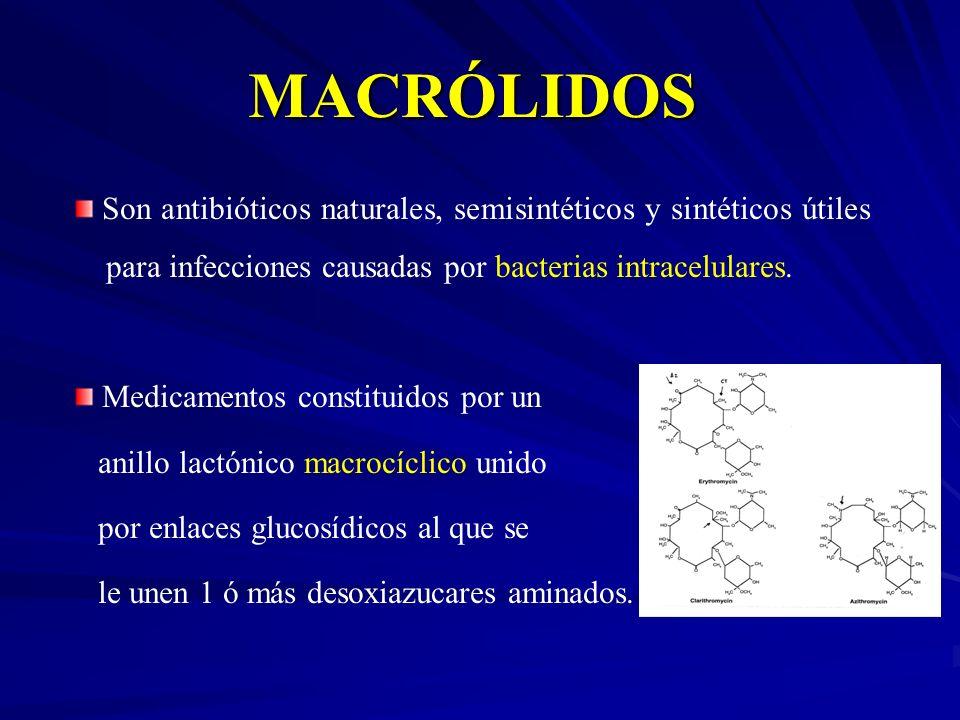 MACRÓLIDOS Son antibióticos naturales, semisintéticos y sintéticos útiles para infecciones causadas por bacterias intracelulares. Medicamentos constit