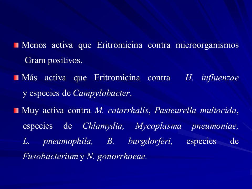 Menos activa que Eritromicina contra microorganismos Gram positivos. Más activa que Eritromicina contra H. influenzae y especies de Campylobacter. Muy