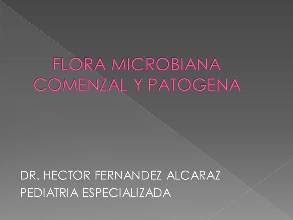 DR. HECTOR FERNANDEZ ALCARAZ PEDIATRIA ESPECIALIZADA