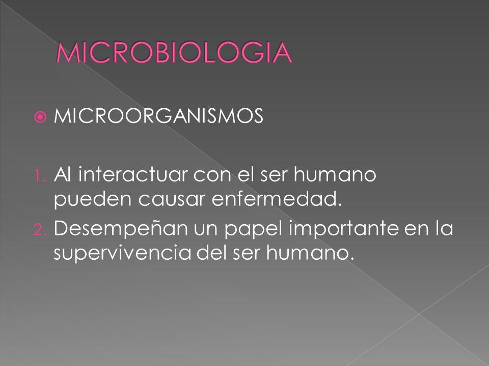 MICROORGANISMOS 1. Al interactuar con el ser humano pueden causar enfermedad. 2. Desempeñan un papel importante en la supervivencia del ser humano.