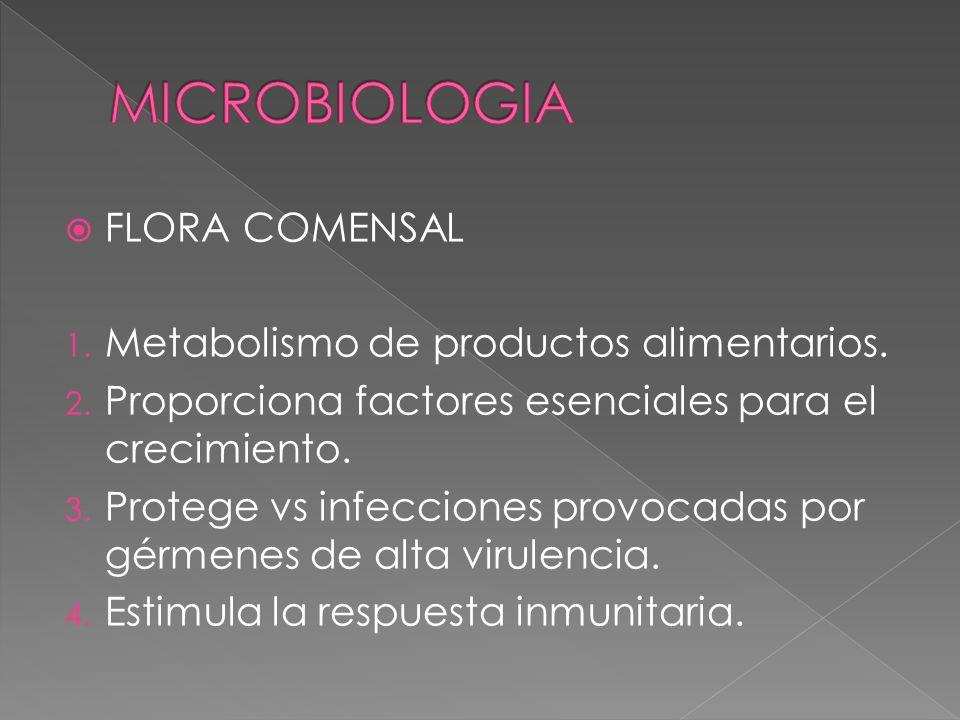 FLORA COMENSAL 1. Metabolismo de productos alimentarios. 2. Proporciona factores esenciales para el crecimiento. 3. Protege vs infecciones provocadas