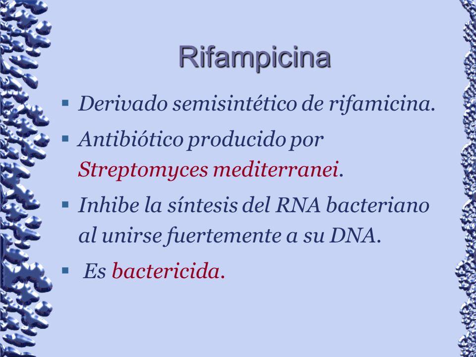Rifampicina Derivado semisintético de rifamicina. Antibiótico producido por Streptomyces mediterranei. Inhibe la síntesis del RNA bacteriano al unirse