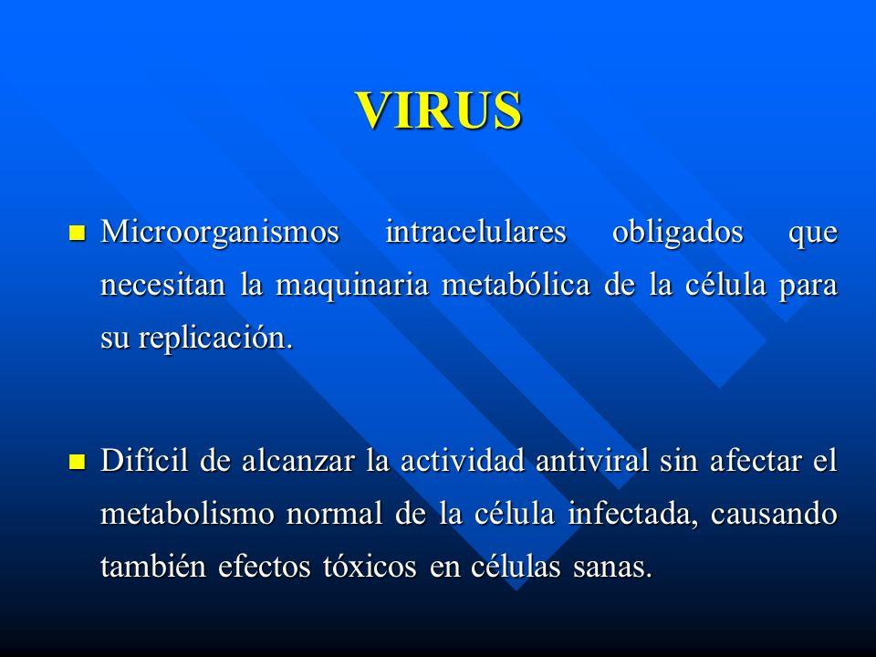 VIRUS Microorganismos intracelulares obligados que necesitan la maquinaria metabólica de la célula para su replicación. Microorganismos intracelulares