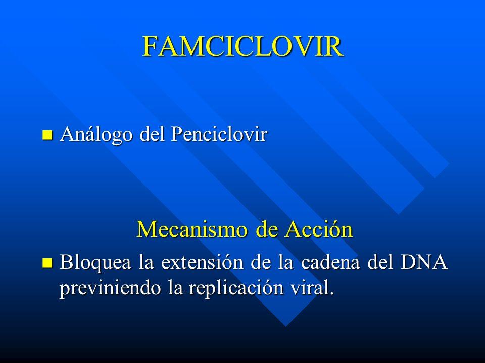 FAMCICLOVIR Análogo del Penciclovir Análogo del Penciclovir Mecanismo de Acción Bloquea la extensión de la cadena del DNA previniendo la replicación v