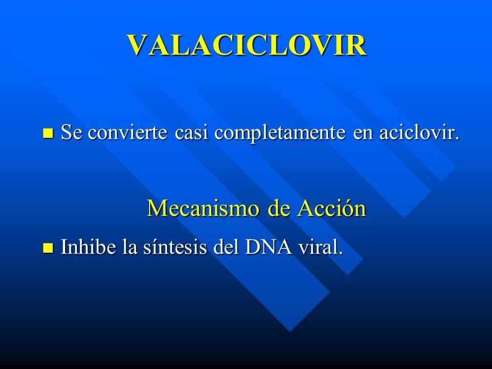 VALACICLOVIR Se convierte casi completamente en aciclovir. Se convierte casi completamente en aciclovir. Mecanismo de Acción Inhibe la síntesis del DN