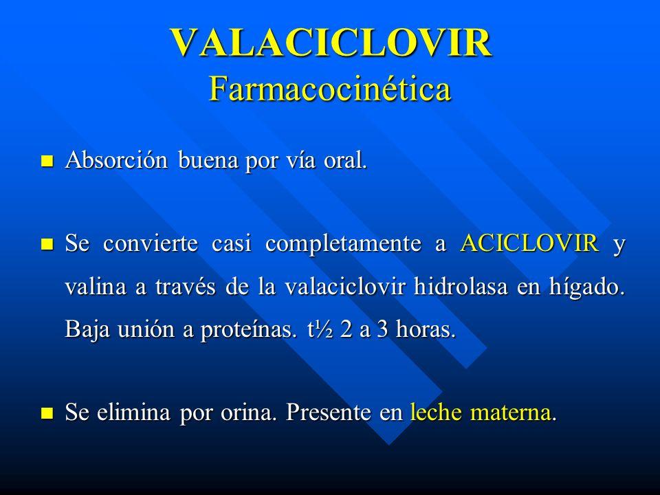 VALACICLOVIR Farmacocinética Absorción buena por vía oral. Absorción buena por vía oral. Se convierte casi completamente a ACICLOVIR y valina a través