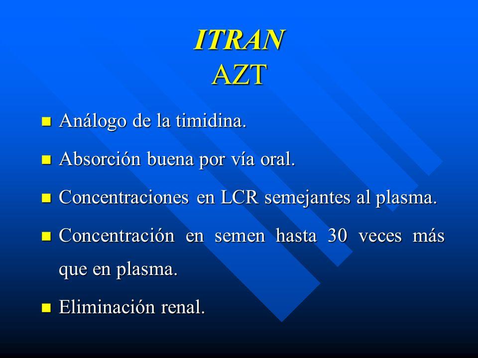 ITRAN AZT Análogo de la timidina. Análogo de la timidina. Absorción buena por vía oral. Absorción buena por vía oral. Concentraciones en LCR semejante