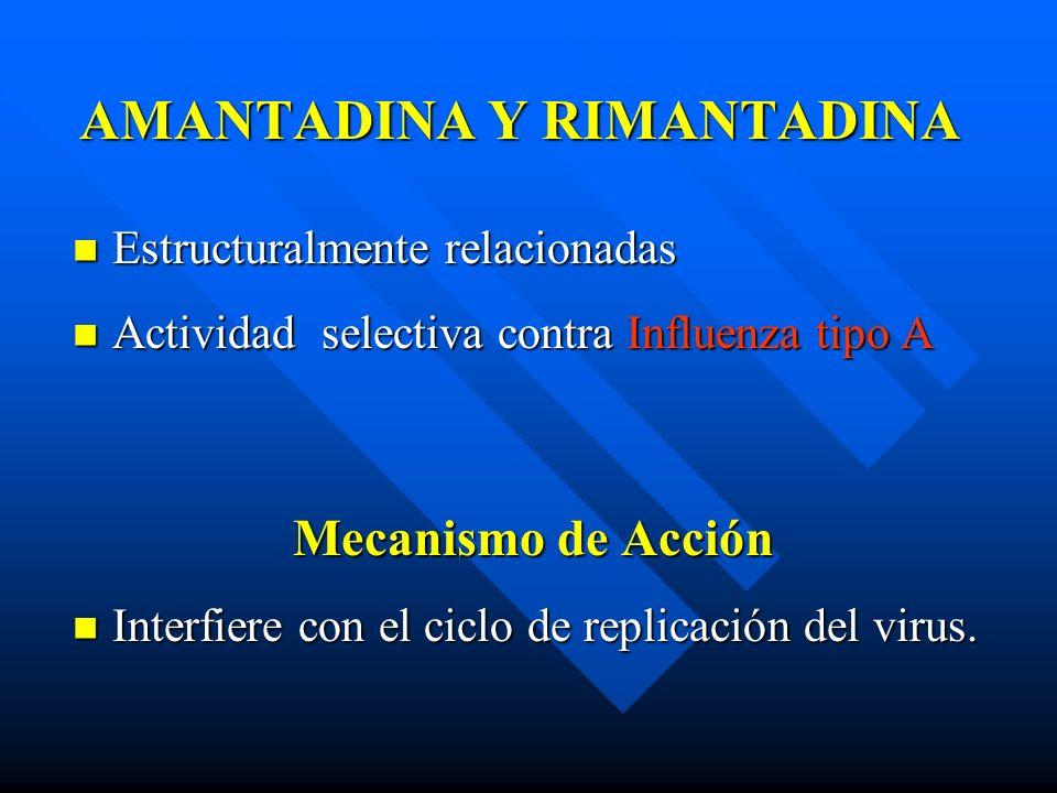 AMANTADINA Y RIMANTADINA Estructuralmente relacionadas Estructuralmente relacionadas Actividad selectiva contra Influenza tipo A Actividad selectiva c