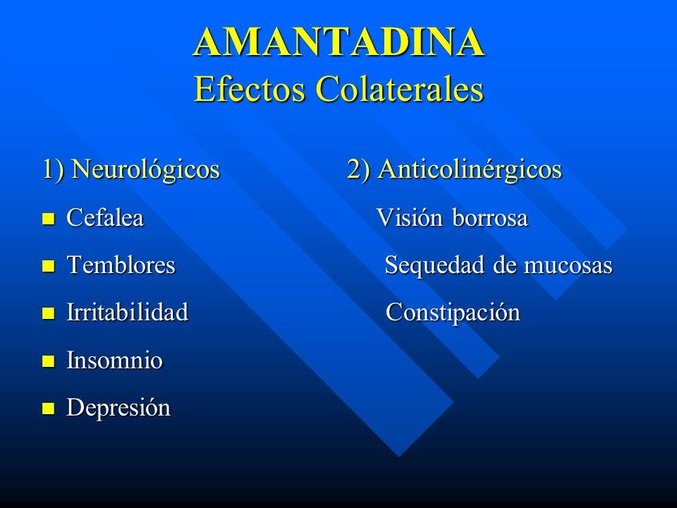AMANTADINA Efectos Colaterales 1) Neurológicos 2) Anticolinérgicos Cefalea Visión borrosa Cefalea Visión borrosa Temblores Sequedad de mucosas Temblor
