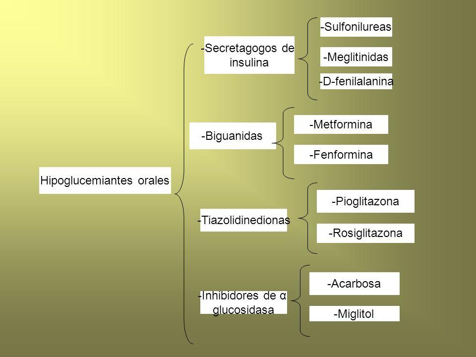 Hipoglucemiantes orales -Secretagogos de insulina -Sulfonilureas -Meglitinidas -D-fenilalanina -Biguanidas -Tiazolidinedionas -Inhibidores de α glucos