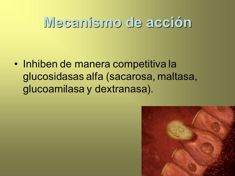 Mecanismo de acción Inhiben de manera competitiva la glucosidasas alfa (sacarosa, maltasa, glucoamilasa y dextranasa).