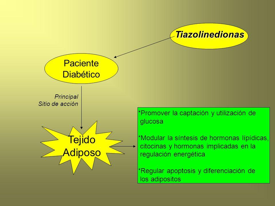 *Promover la captación y utilización de glucosa *Modular la síntesis de hormonas lípídicas, citocinas y hormonas implicadas en la regulación energétic