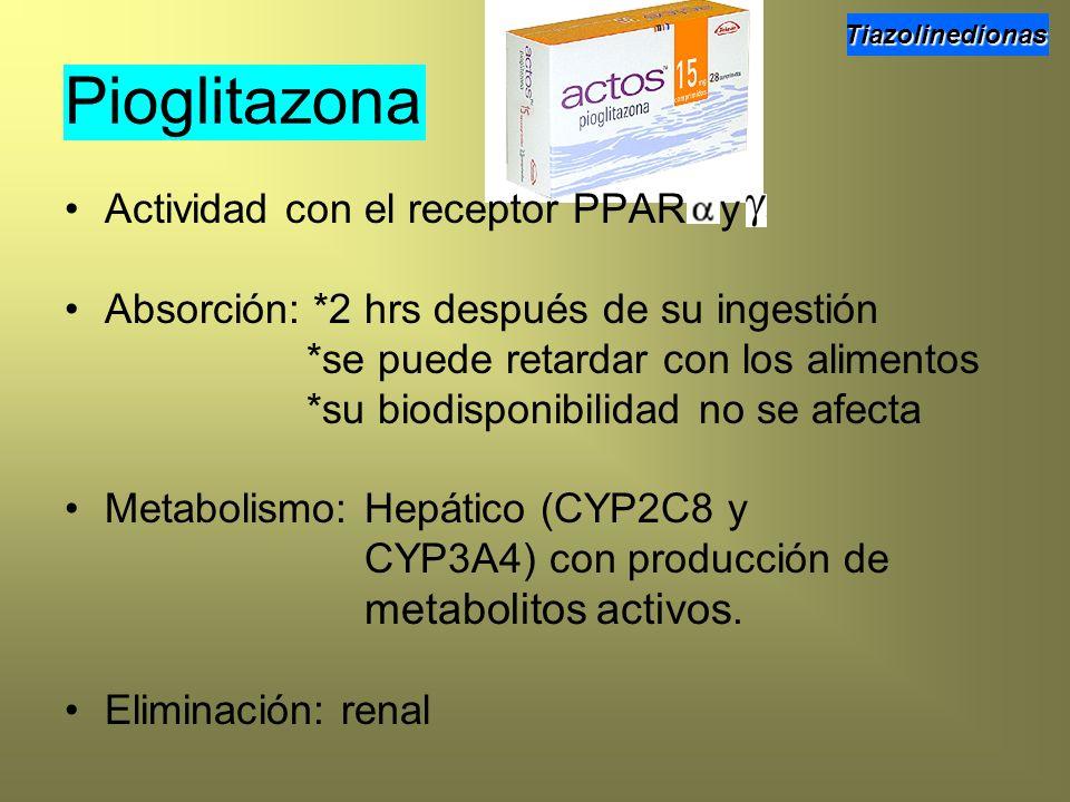 Pioglitazona Actividad con el receptor PPAR y Absorción: *2 hrs después de su ingestión *se puede retardar con los alimentos *su biodisponibilidad no
