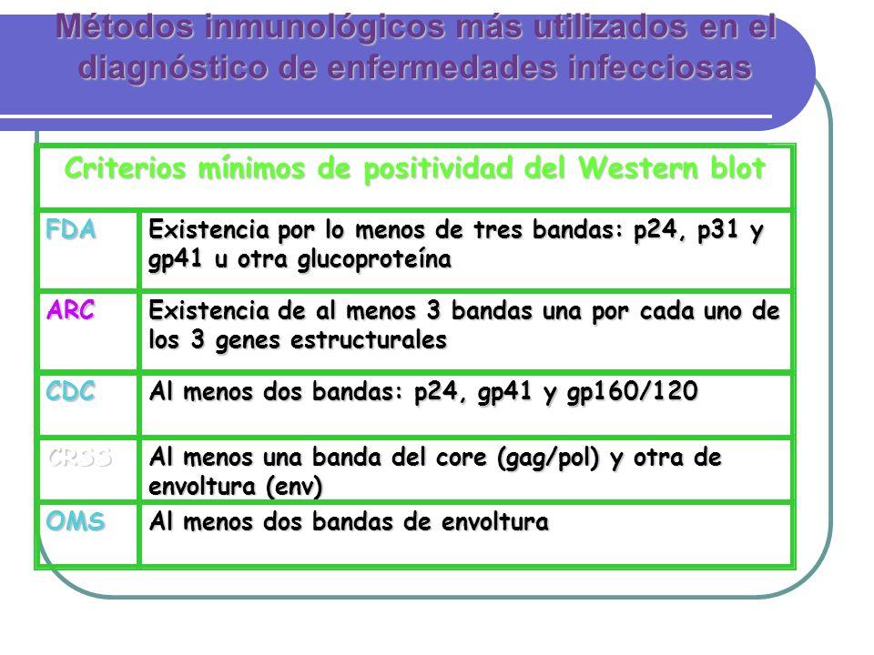 Criterios mínimos de positividad del Western blot FDA Existencia por lo menos de tres bandas: p24, p31 y gp41 u otra glucoproteína ARC Existencia de a