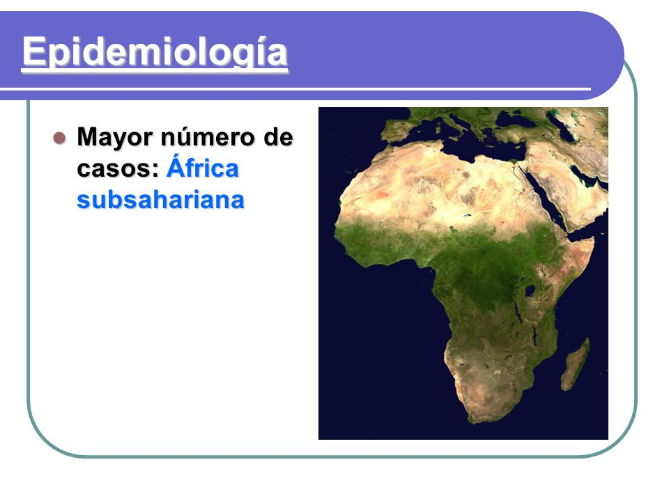 Epidemiología Mayor número de casos:África subsahariana Mayor número de casos: África subsahariana