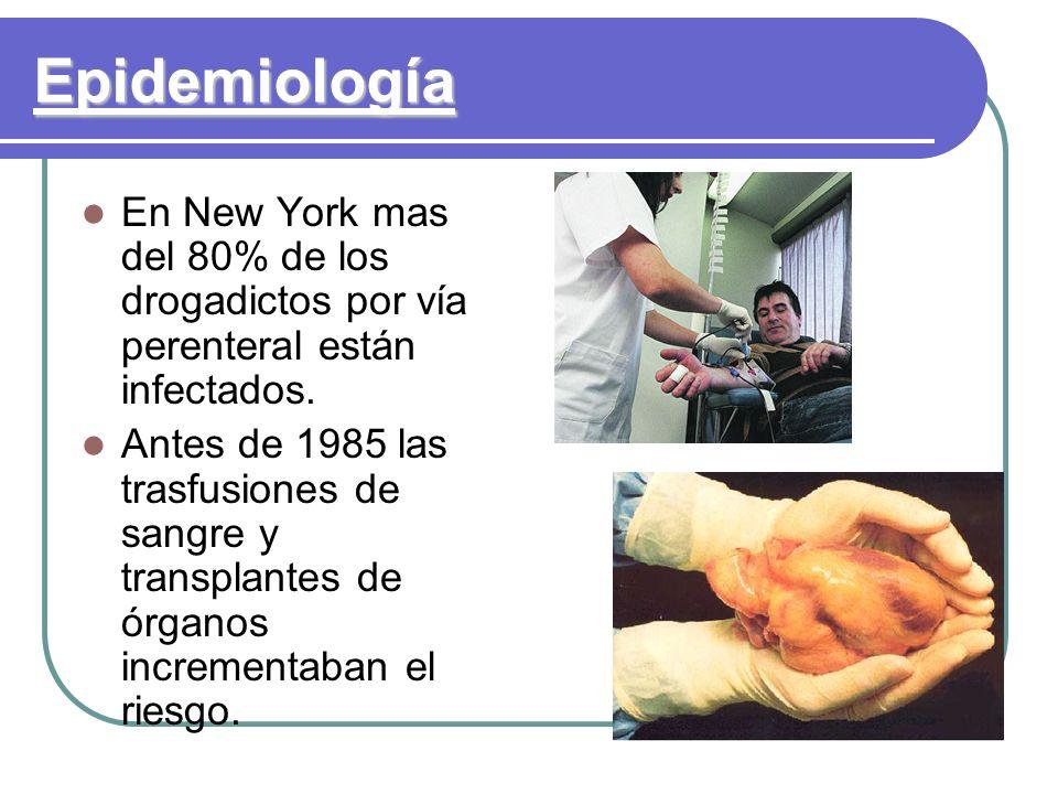 Epidemiología En New York mas del 80% de los drogadictos por vía perenteral están infectados. Antes de 1985 las trasfusiones de sangre y transplantes