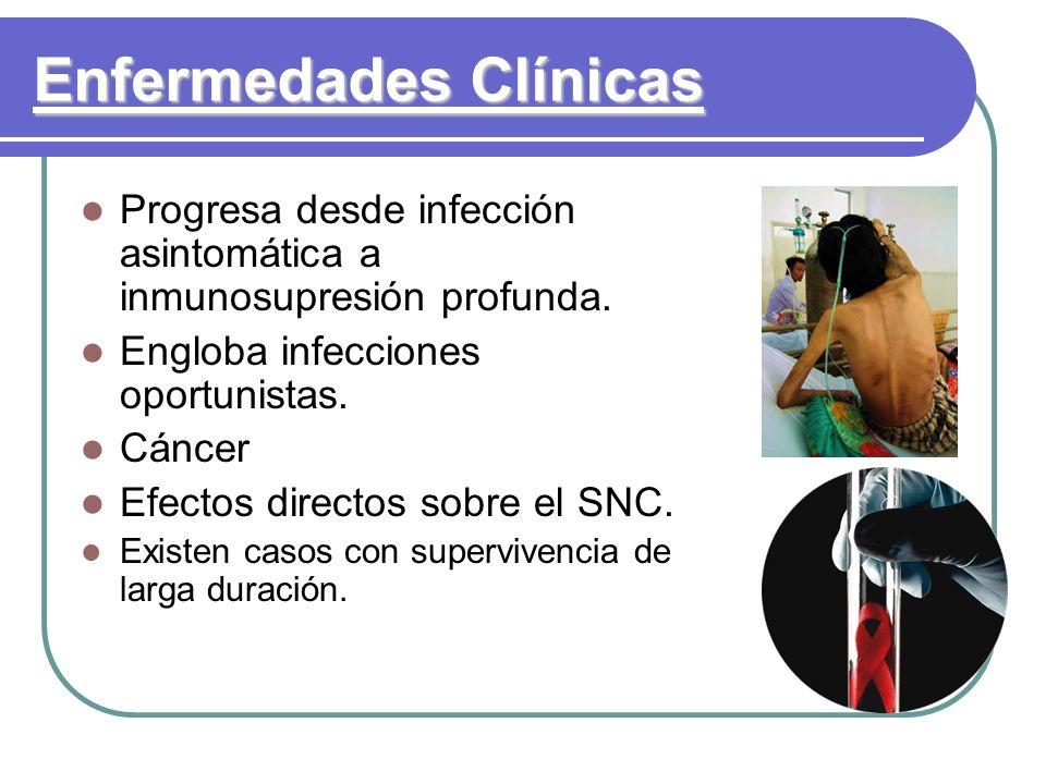 Enfermedades Clínicas Progresa desde infección asintomática a inmunosupresión profunda. Engloba infecciones oportunistas. Cáncer Efectos directos sobr