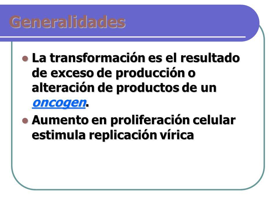 Generalidades La transformación es el resultado de exceso de producción o alteración de productos de un oncogen. La transformación es el resultado de