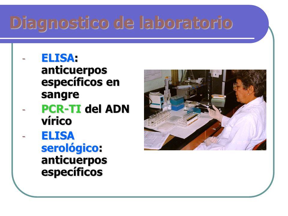 Diagnostico de laboratorio - ELISA: anticuerpos específicos en sangre - PCR-TI del ADN vírico - ELISA serológico: anticuerpos específicos