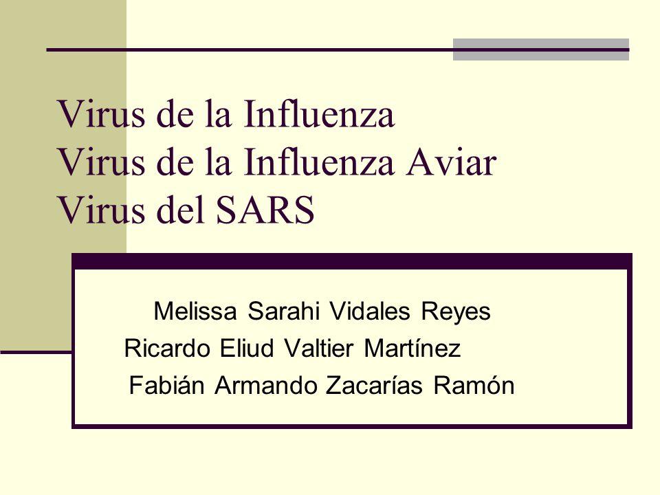 Virus de la Influenza Virus de la Influenza Aviar Virus del SARS Melissa Sarahi Vidales Reyes Ricardo Eliud Valtier Martínez Fabián Armando Zacarías R