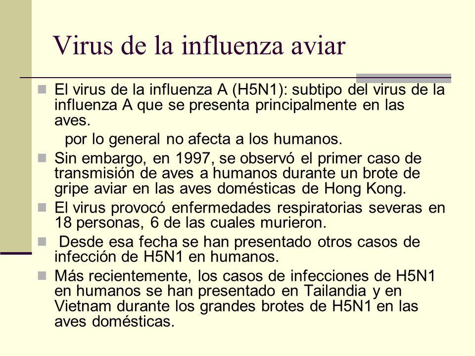 Virus de la influenza aviar El virus de la influenza A (H5N1): subtipo del virus de la influenza A que se presenta principalmente en las aves. por lo