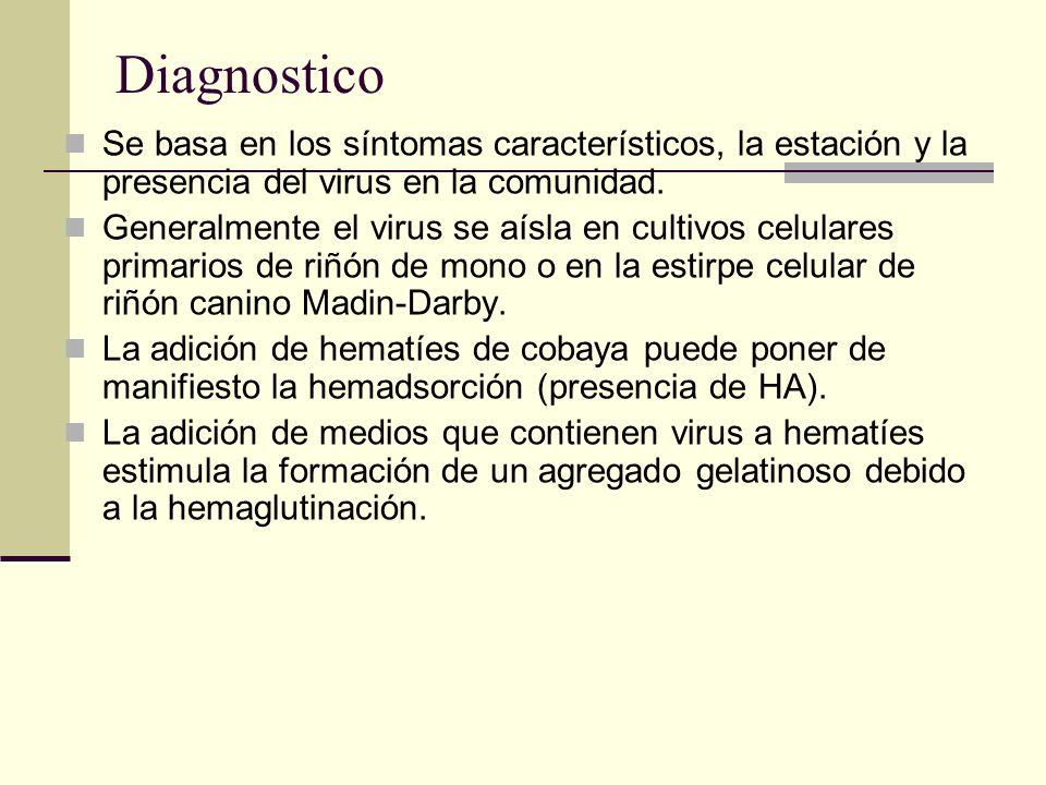 Diagnostico Se basa en los síntomas característicos, la estación y la presencia del virus en la comunidad. Generalmente el virus se aísla en cultivos