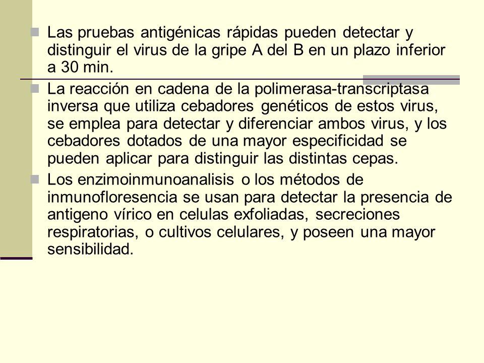 Las pruebas antigénicas rápidas pueden detectar y distinguir el virus de la gripe A del B en un plazo inferior a 30 min. La reacción en cadena de la p