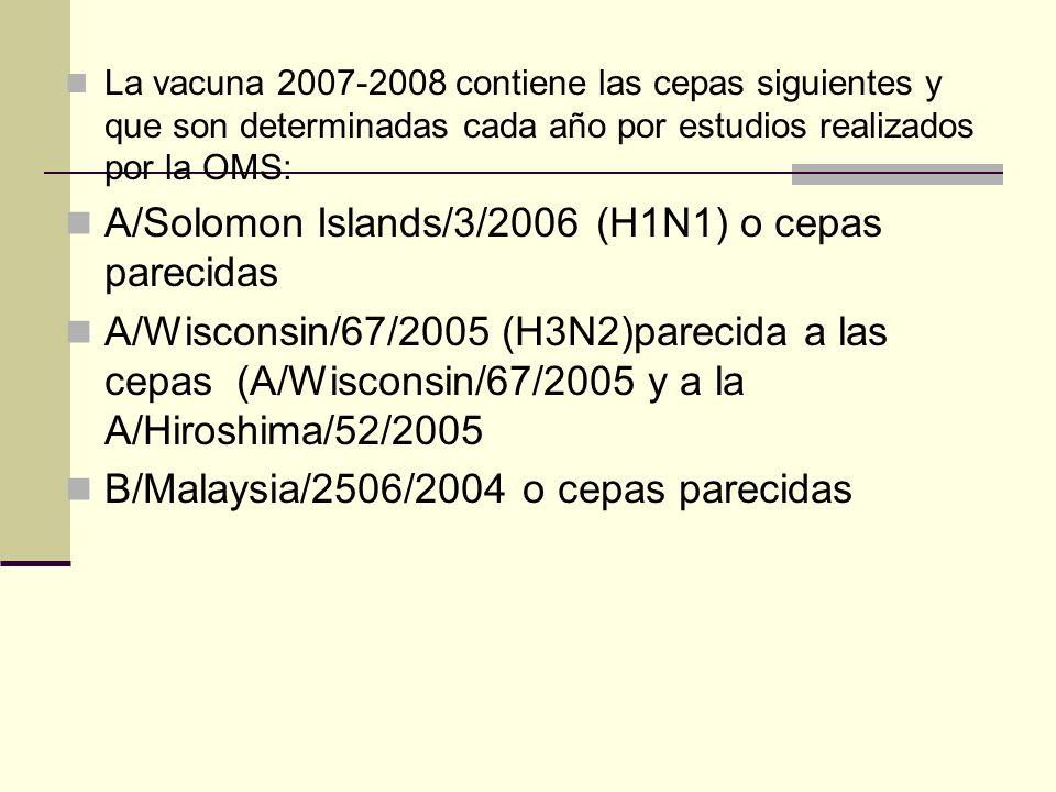 La vacuna 2007-2008 contiene las cepas siguientes y que son determinadas cada año por estudios realizados por la OMS: A/Solomon Islands/3/2006 (H1N1)