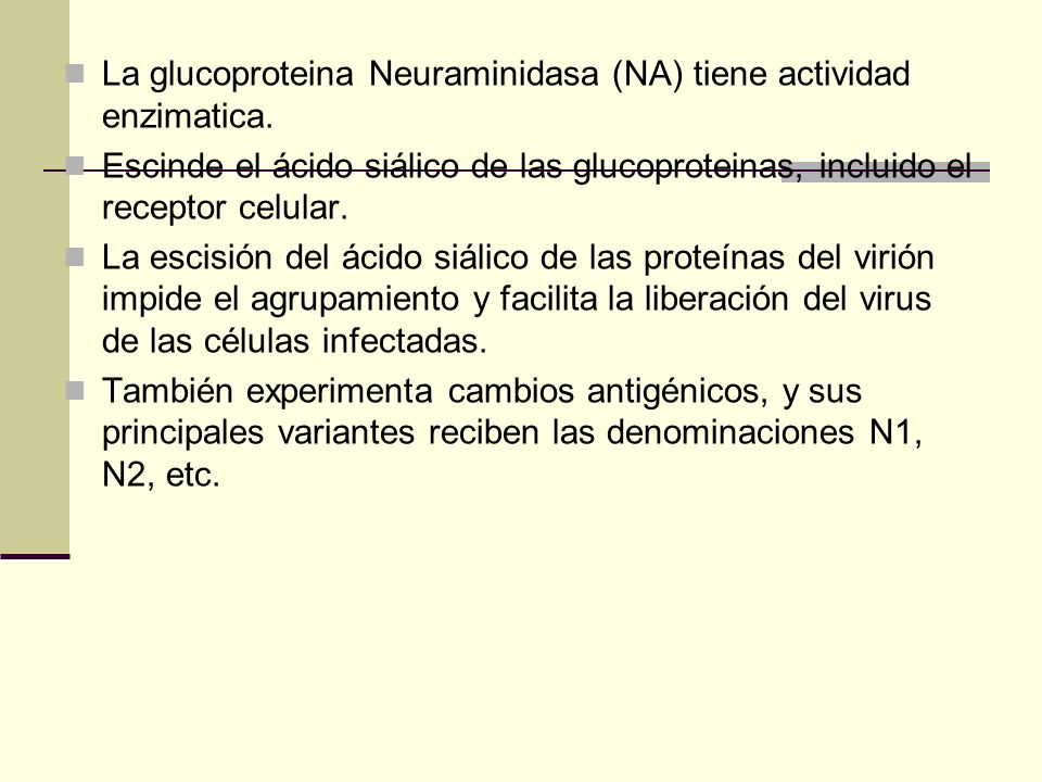 La glucoproteina Neuraminidasa (NA) tiene actividad enzimatica. Escinde el ácido siálico de las glucoproteinas, incluido el receptor celular. La escis