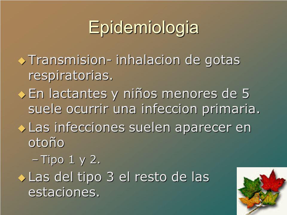 Epidemiologia Transmision- inhalacion de gotas respiratorias. Transmision- inhalacion de gotas respiratorias. En lactantes y niños menores de 5 suele