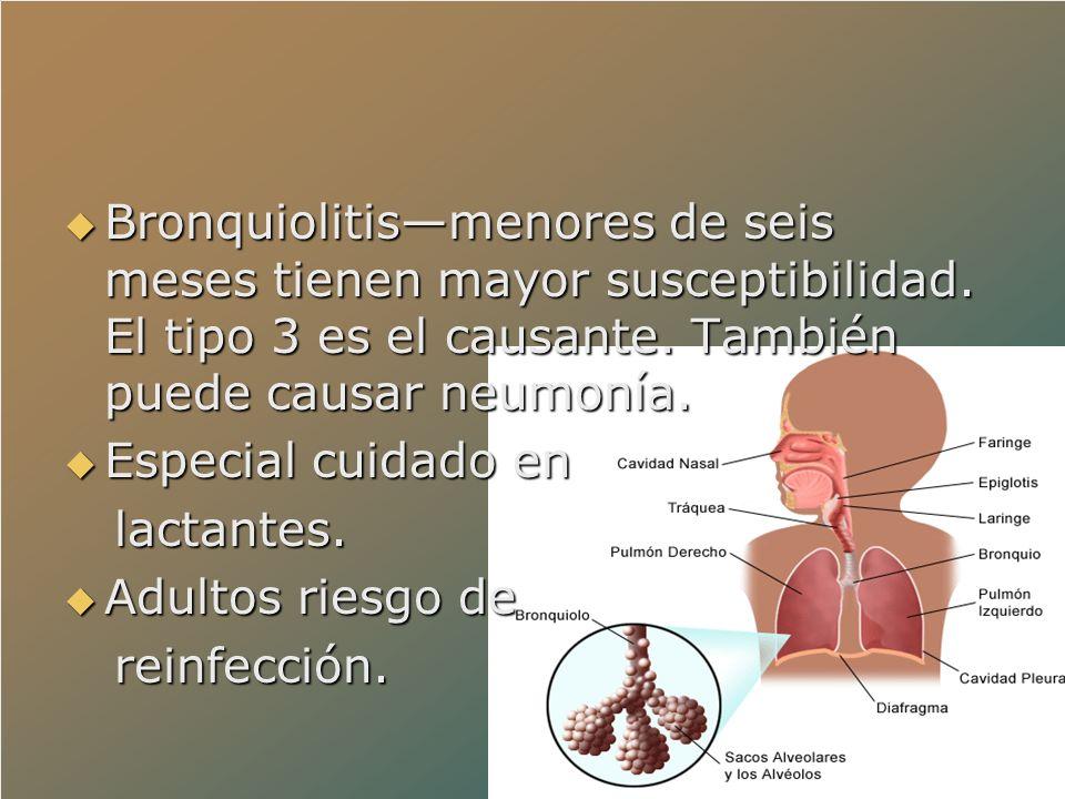 Bronquiolitismenores de seis meses tienen mayor susceptibilidad. El tipo 3 es el causante. También puede causar neumonía. Bronquiolitismenores de seis
