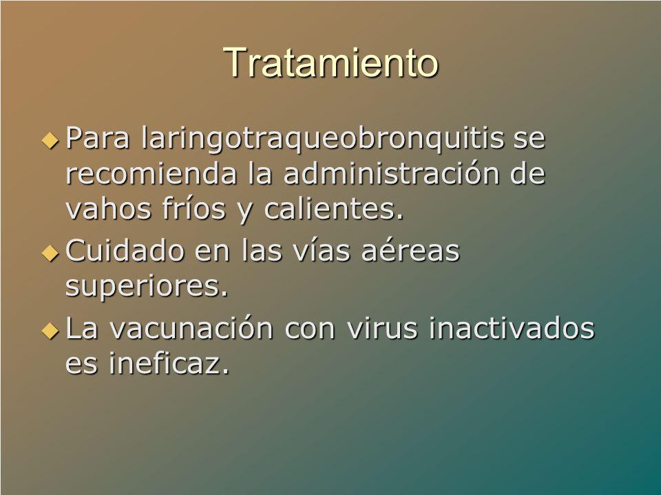 Tratamiento Para laringotraqueobronquitis se recomienda la administración de vahos fríos y calientes. Para laringotraqueobronquitis se recomienda la a