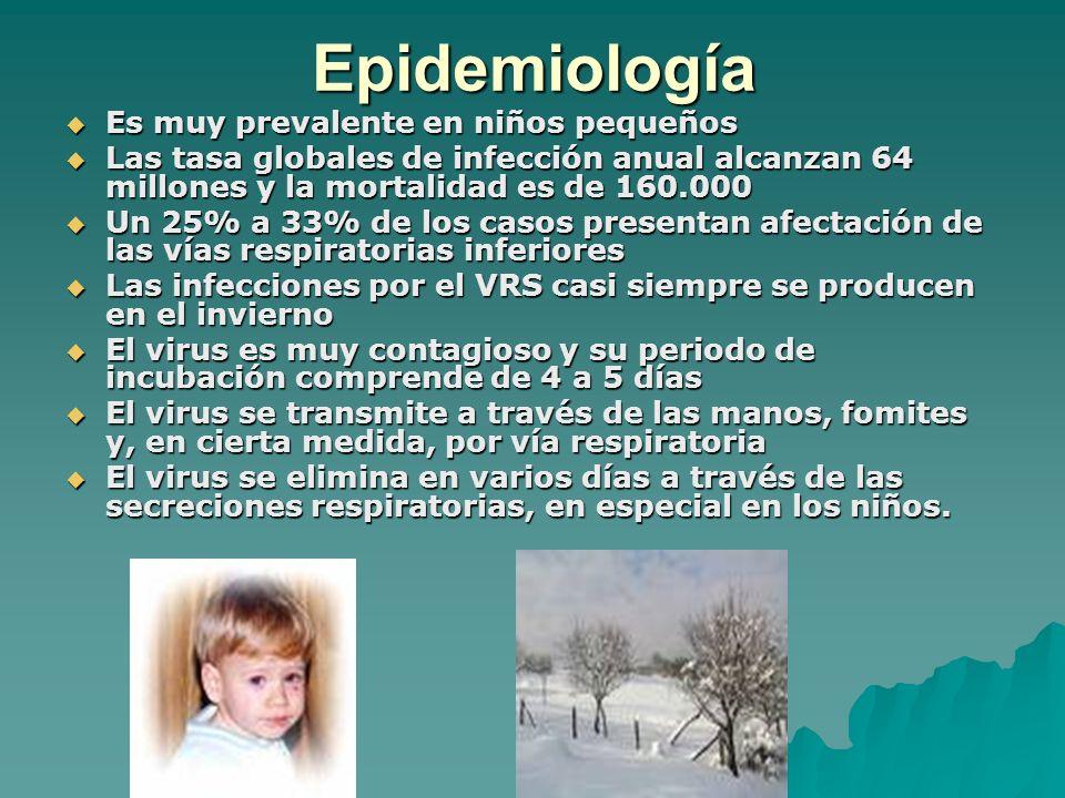 Epidemiología Es muy prevalente en niños pequeños Es muy prevalente en niños pequeños Las tasa globales de infección anual alcanzan 64 millones y la m