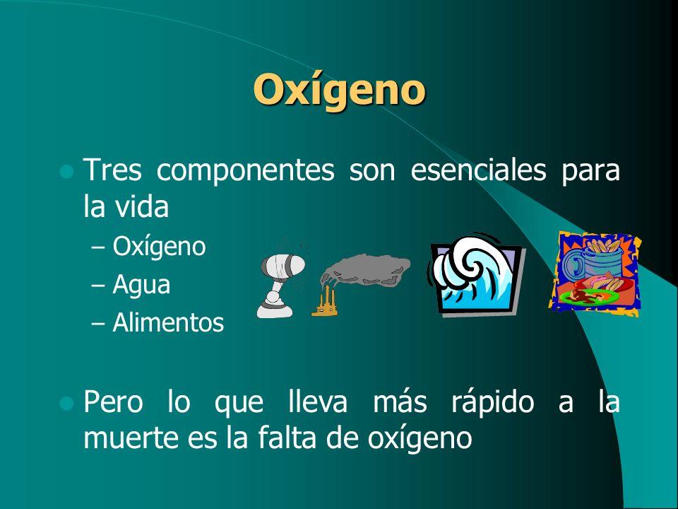 Oxígeno Tres componentes son esenciales para la vida – Oxígeno – Agua – Alimentos Pero lo que lleva más rápido a la muerte es la falta de oxígeno