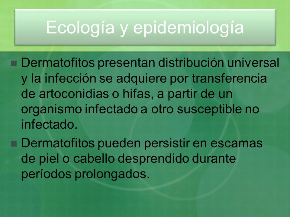 Dermatofitos presentan distribución universal y la infección se adquiere por transferencia de artoconidias o hifas, a partir de un organismo infectado