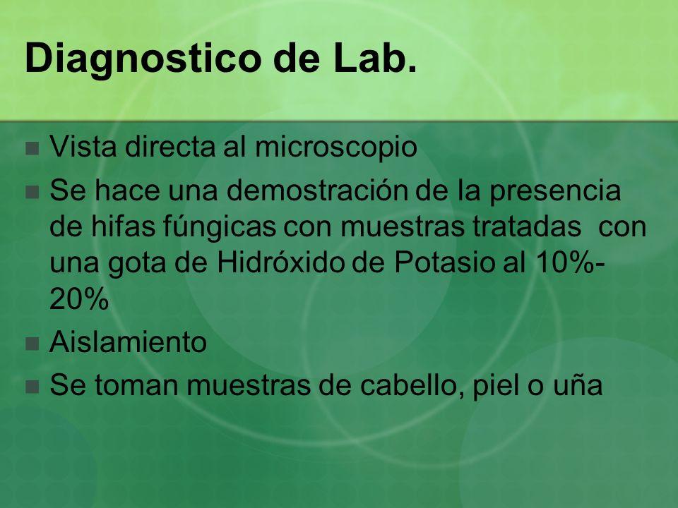 Diagnostico de Lab. Vista directa al microscopio Se hace una demostración de la presencia de hifas fúngicas con muestras tratadas con una gota de Hidr