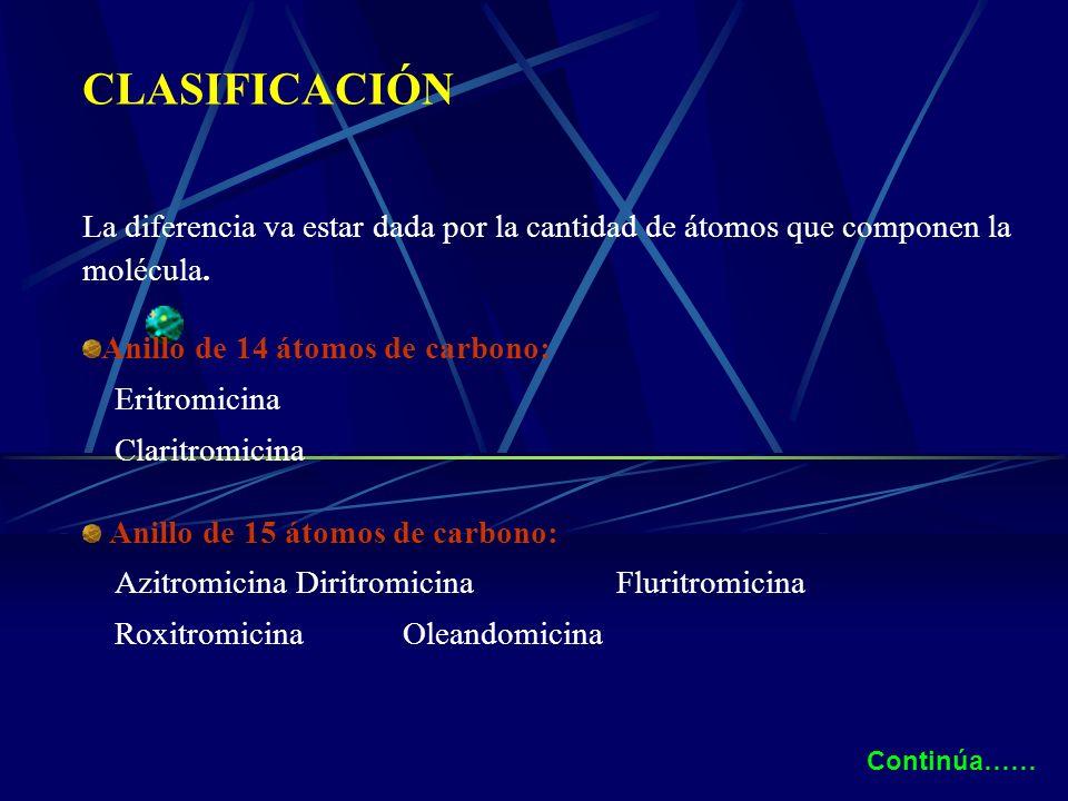 CLASIFICACIÓN La diferencia va estar dada por la cantidad de átomos que componen la molécula. Anillo de 14 átomos de carbono: Eritromicina Claritromic