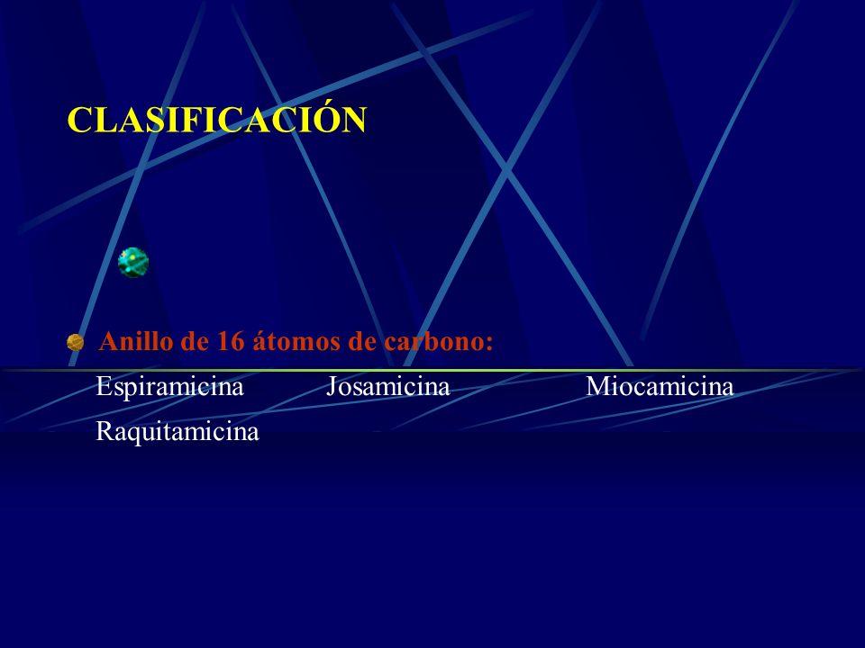CLASIFICACIÓN Anillo de 16 átomos de carbono: EspiramicinaJosamicinaMiocamicina Raquitamicina