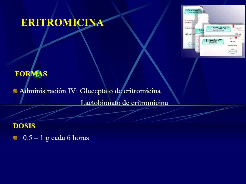 ERITROMICINA FORMAS Administración IV: Gluceptato de eritromicina Lactobionato de eritromicina DOSIS 0.5 – 1 g cada 6 horas