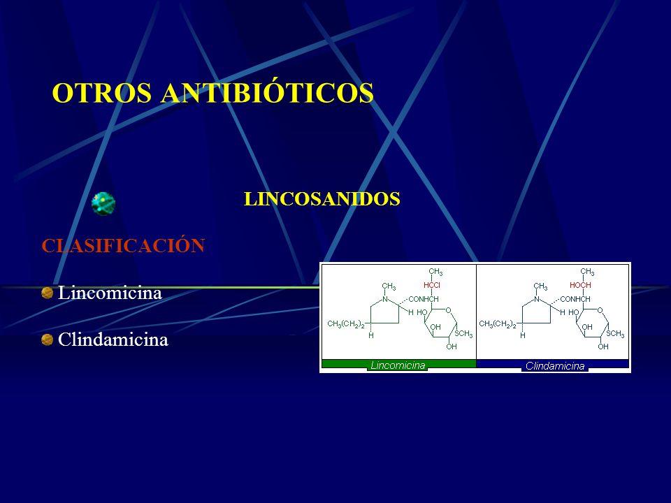 OTROS ANTIBIÓTICOS LINCOSANIDOS CLASIFICACIÓN Lincomicina Clindamicina