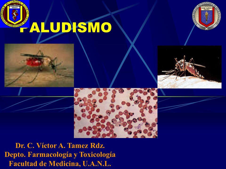 PALUDISMO Dr. C. Víctor A. Tamez Rdz. Depto. Farmacología y Toxicología Facultad de Medicina, U.A.N.L.